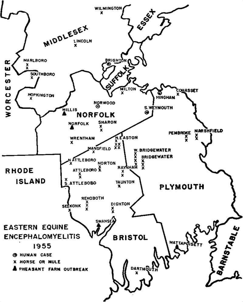 eastern equine encephalomyelitis in massachusetts in 1955 report 1956 MG Roadster map of the counties of eastern massachusetts showing the distribution of eastern equine encephalomyelitis in various hosts in 1955