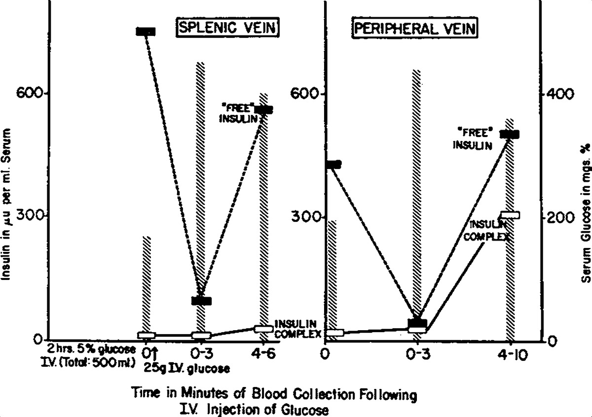 Studies on the state of insulin in blood examination of splenic free insulin and insulin complexes in blood serum from the splenic and peripheral veins of a nondiabetic subject before and after glucose administration pooptronica Choice Image