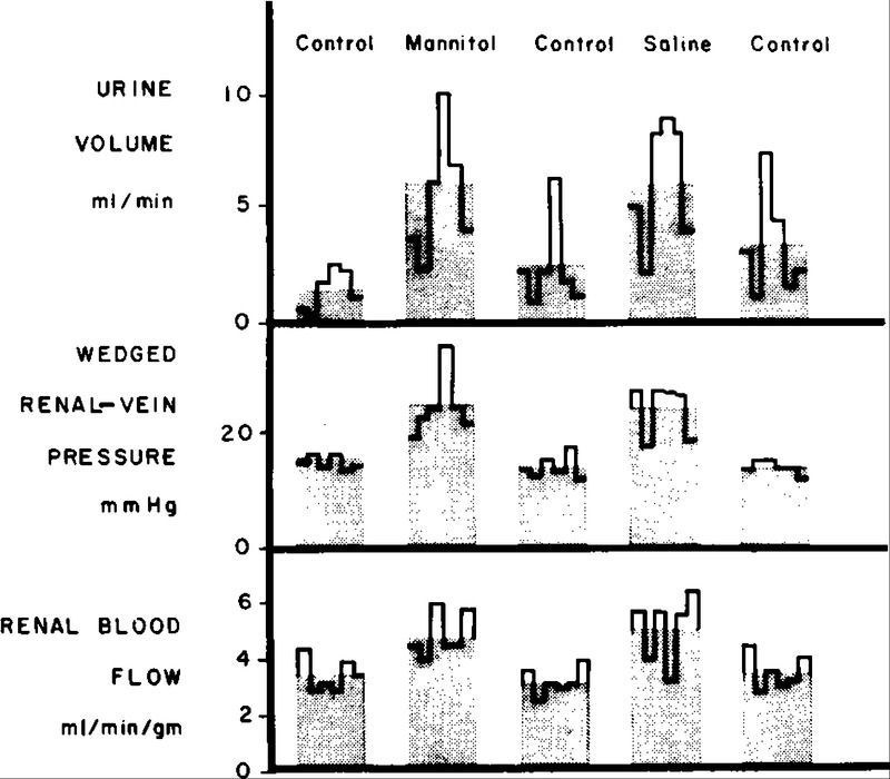 Effect of Mannitol on the Kidney — Changes in Intrarenal