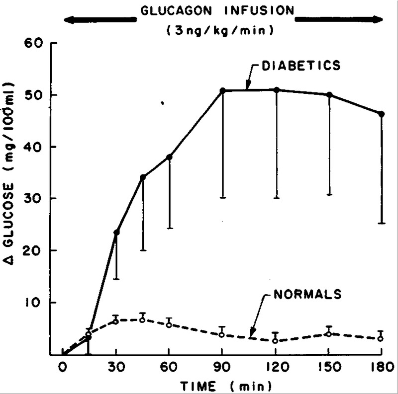 how to raise glucagon levels