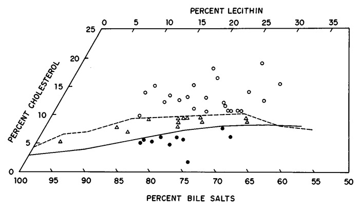 Cholesterol Crystals and the Formation of Cholesterol