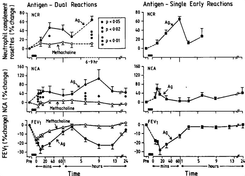 Leukocyte Activation In Allergen Induced Late Phase Asthmatic