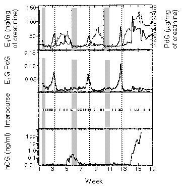Timing of Sexual Intercourse in Relation to Ovulation — Effects on