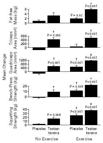 The Effects of Supraphysiologic Doses of Testosterone on Muscle Size