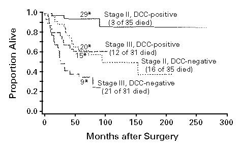 The DCC Protein and Prognosis in Colorectal Cancer | NEJM
