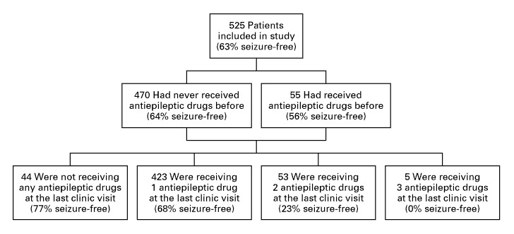 Outcome in 525 Children, Adolescents, and Adults Who Received  Antiepileptic-Drug Therapy.