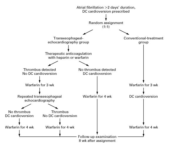 Use of Transesophageal Echocardiography to Guide