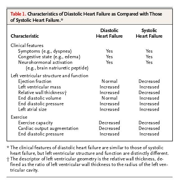 Effect of Exercise on Cardiac Output Essay