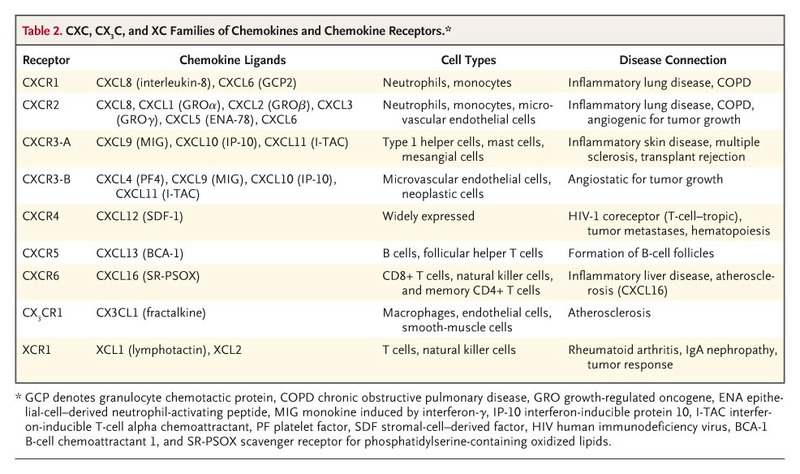 The Many Roles of Chemokines and Chemokine Receptors in
