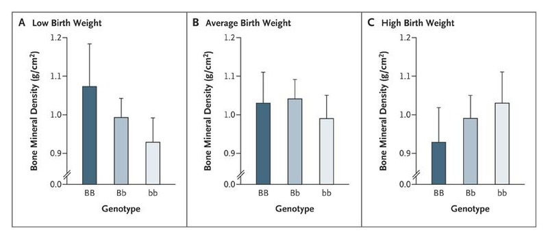 Effect of In Utero and Early-Life Conditions on Adult Health and