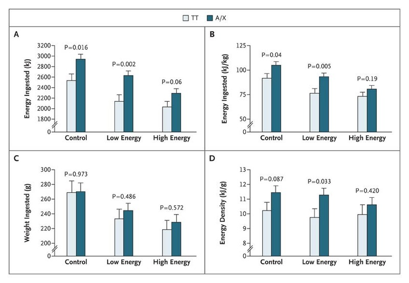 An Obesity-Associated FTO Gene Variant and Increased Energy