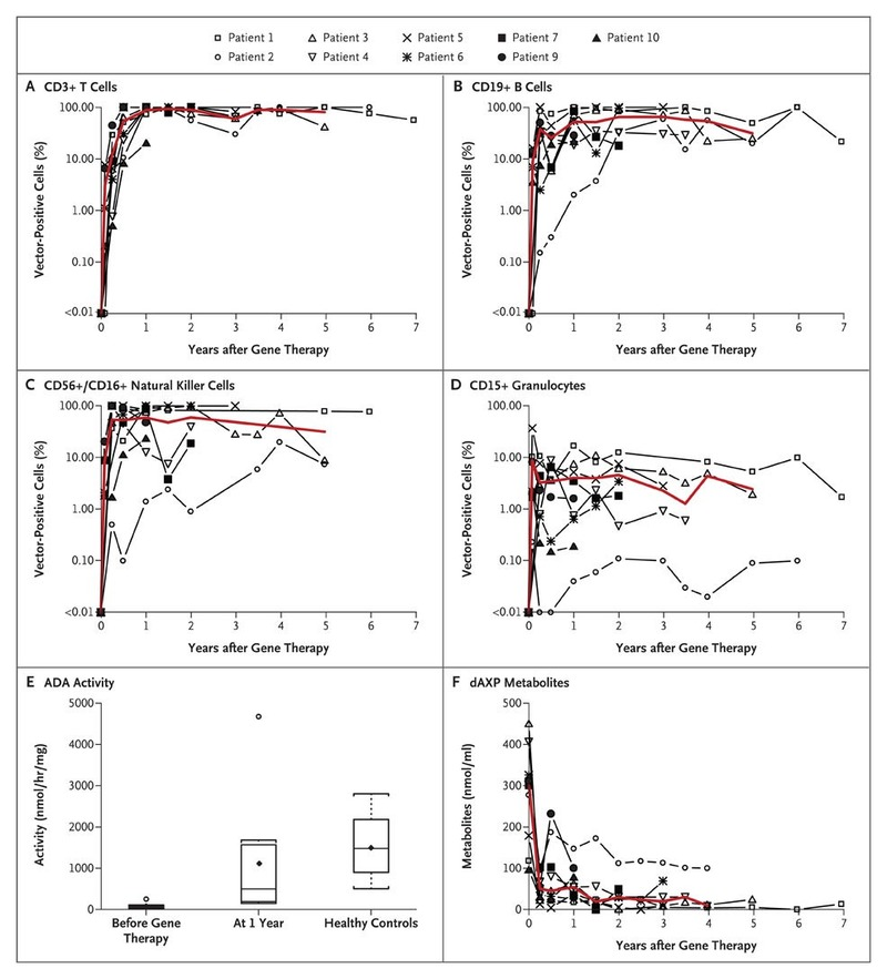 Persistence of ADA-Transduced Cells, ADA Activity, and Purine Metabolites  in Peripheral Blood.