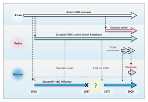 Historical Perspective — Emergence of Influenza A (H1N1) Viruses