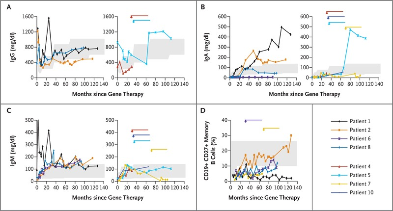 Efficacy of gene therapy for x linked severe combined serum immunoglobulin levels and memory b cell counts after gene therapy ccuart Gallery