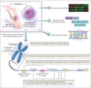 The Beginning of the End of the Beginning in Cancer Genomics