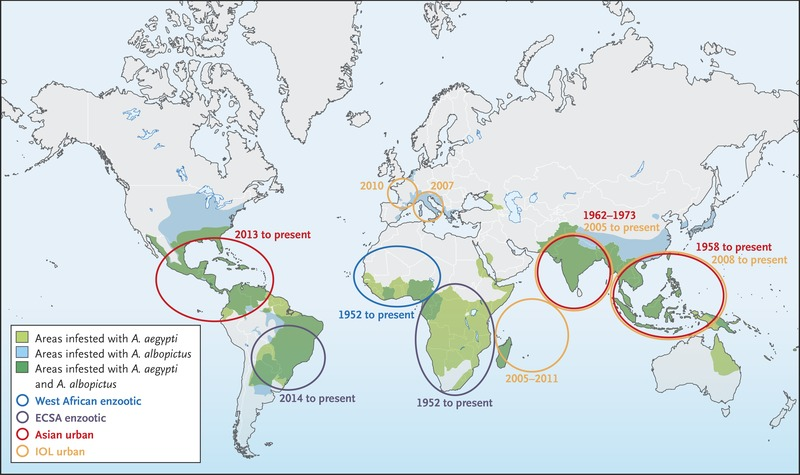 Chikungunya Virus and the Global Spread of a Mosquito-Borne Disease