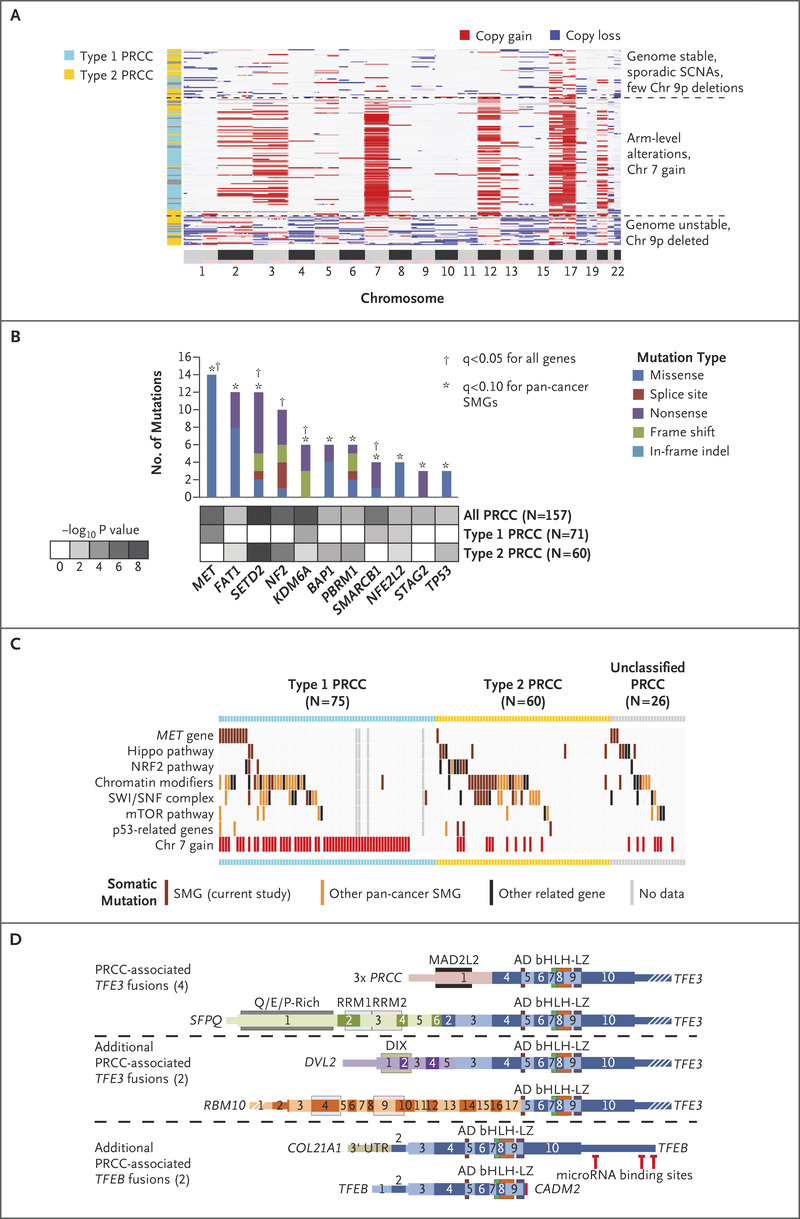 Comprehensive Molecular Characterization of Papillary Renal-Cell