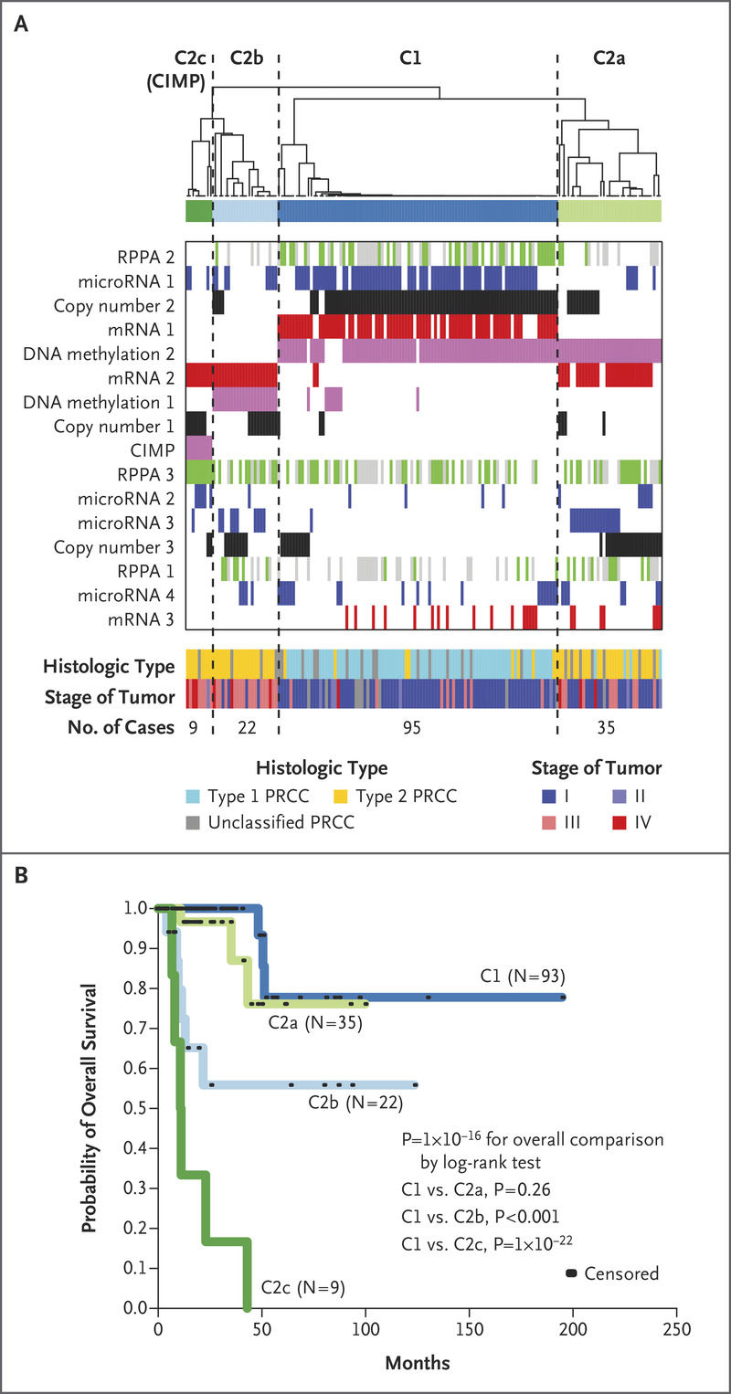 Comprehensive Molecular Characterization Of Papillary Renal Cell Carcinoma Nejm