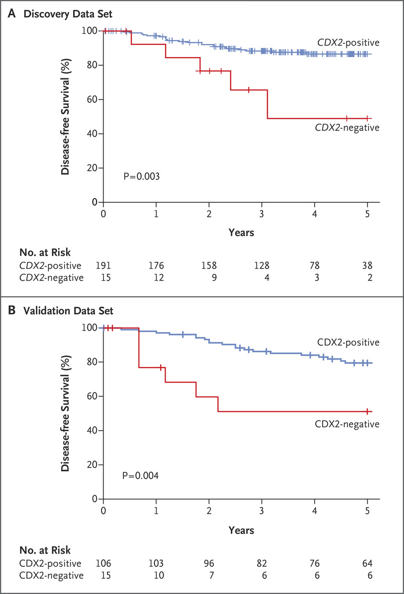 Cdx2 As A Prognostic Biomarker In Stage Ii And Stage Iii Colon Cancer Nejm