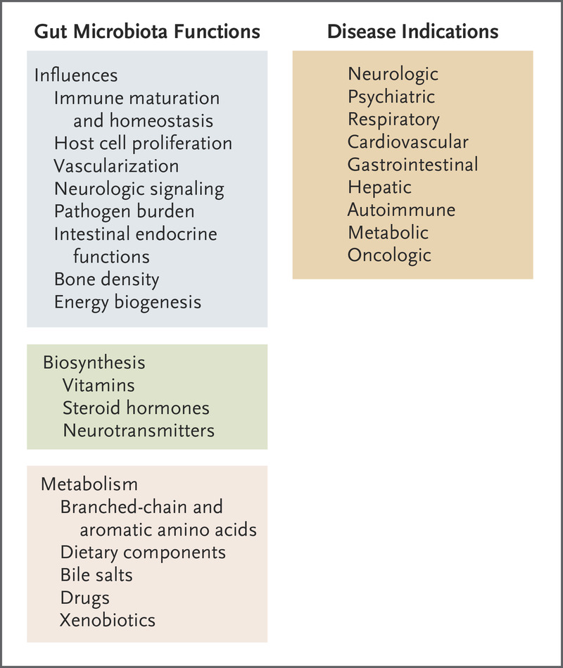 The Human Intestinal Microbiome in Health and Disease | NEJM