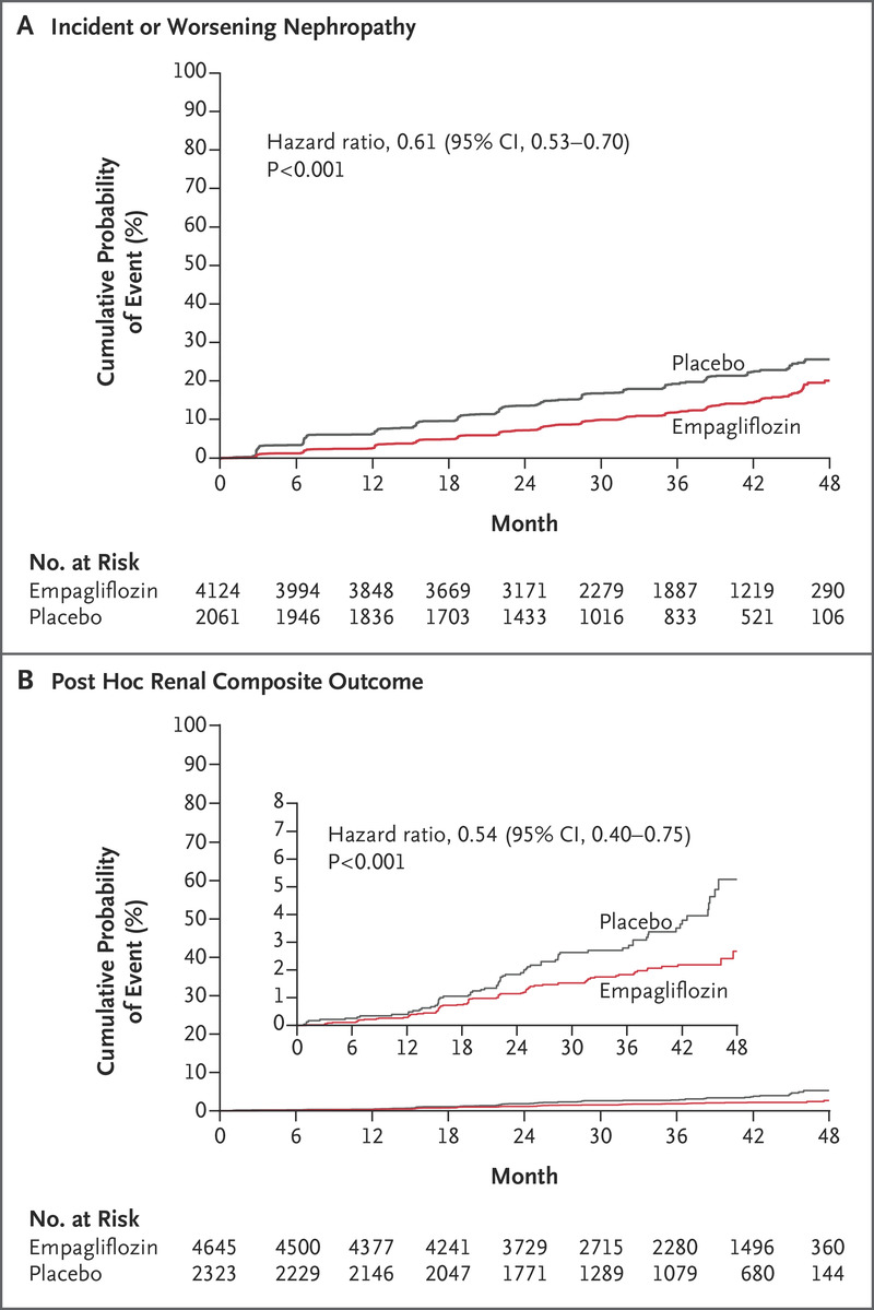 Empagliflozin And Progression Of Kidney Disease In Type 2 Diabetes Nejm