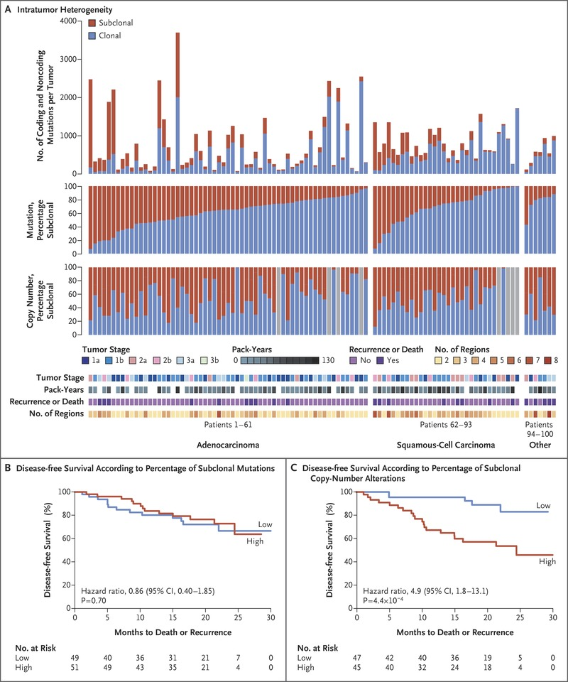 Fig. 2 Genomic Heterogeneity of Tumor Obtained from Patients with NSCLC