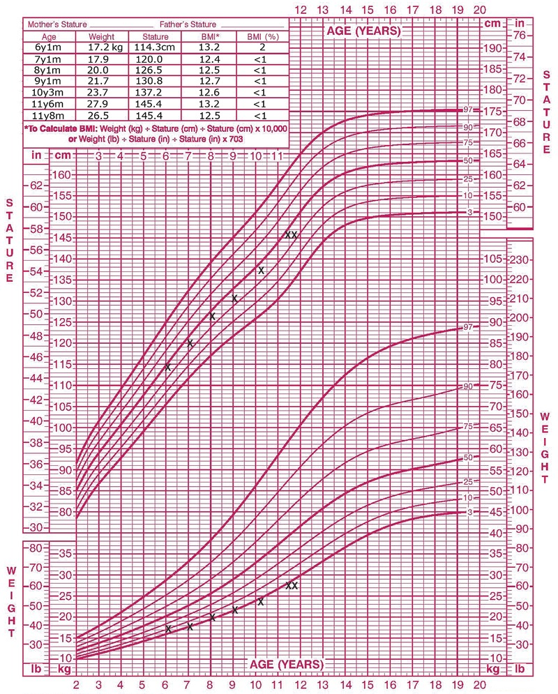 12 year old weight chart images free any chart examples average weight chart image collections free any chart examples case 18 2017 an 11 year old nvjuhfo Images