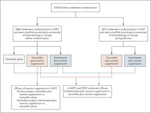 Tailoring Adjuvant Endocrine Therapy for Premenopausal