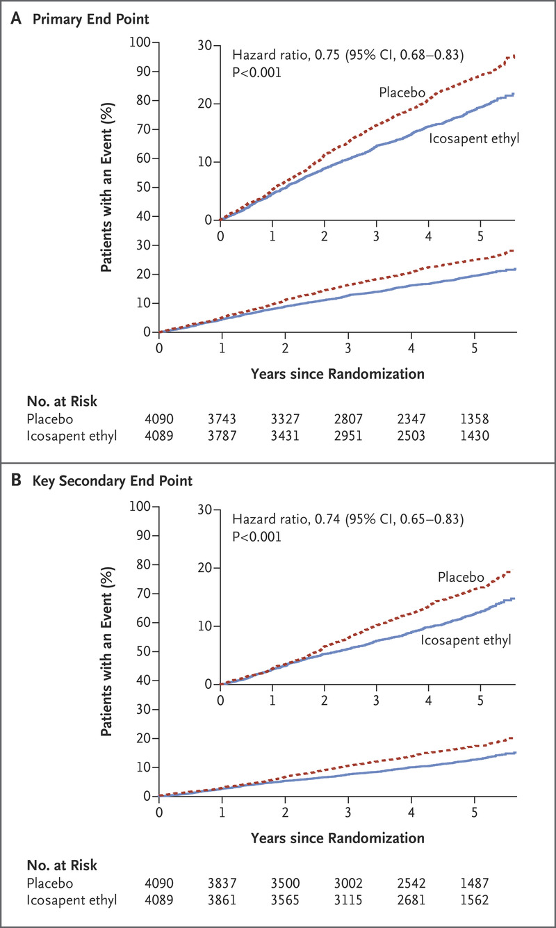 Cardiovascular Risk Reduction with Icosapent Ethyl for