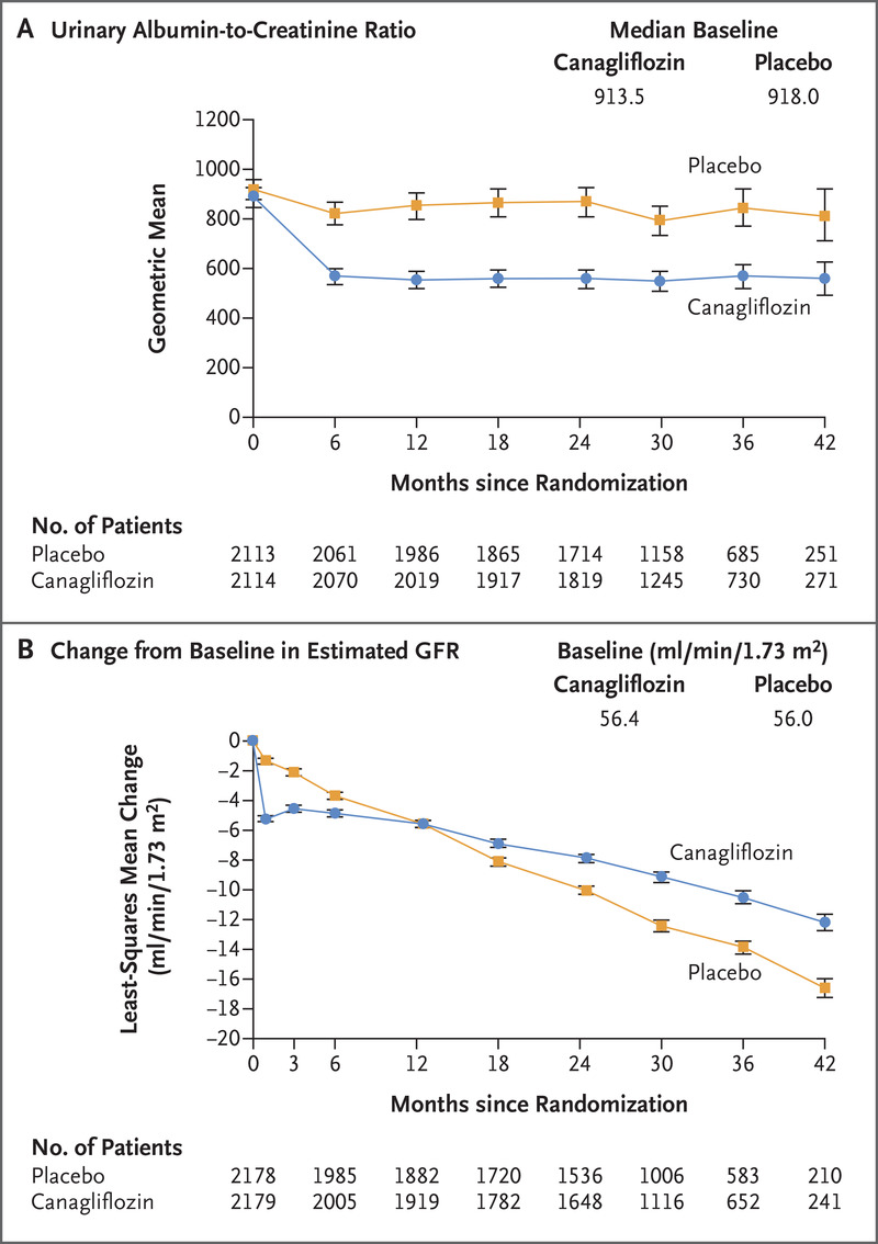 Canagliflozin and Renal Outcomes in Type 2 Diabetes and