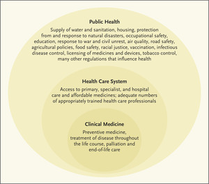 """The complementarity of public health and medicine: achieving """"the highest possible level of health"""""""